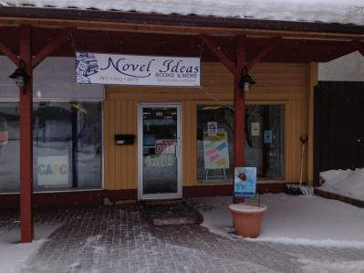 Novel Ideas bookstore Dryden Winter